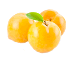 albaricoque-amarillo-220