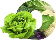 o-hortalizas