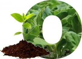 o-semilleros