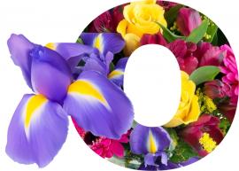 o-flores