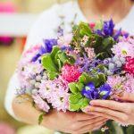 flores-alimer